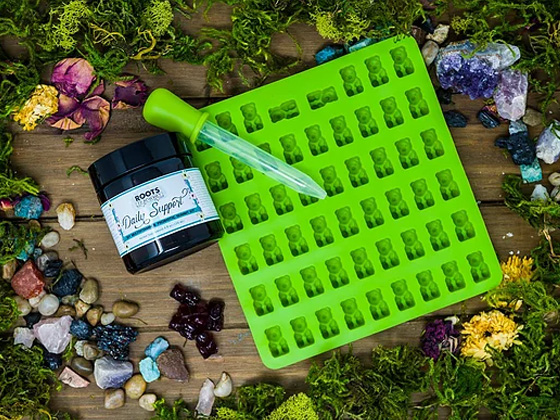 Daily Support DIY Multivitamin and Probiotic Herbal Gummy Kit - RootsToRemedies.com
